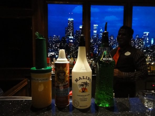Mixology class in the Skyline